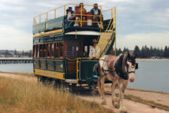 Unique horse-drawn trams saved!